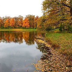 "фото ""Осенние кадры-6"""