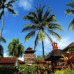 "фото ""Paradise of palms&Temples"""