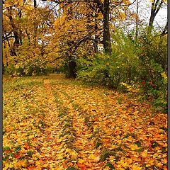 "фото ""Осенние кадры-7"""