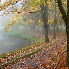 "фото ""Осенний вальс-бостон..."""