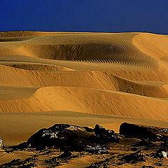 """фото """"Sand Dunes #15"""""""