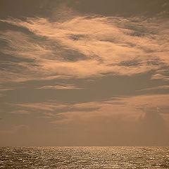 "фото ""The golden sea"""