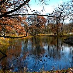 """photo """"A pond in the park of Pushkin"""""""