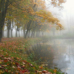 "фото ""На фоне тумана - осень."""