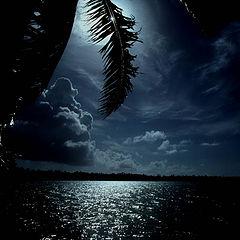 """фото """"tahiti full moon"""""""