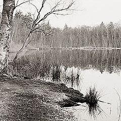 "фото ""Calm autumn"""