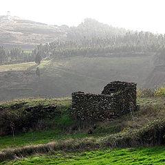 """фото """"Ruins"""""""