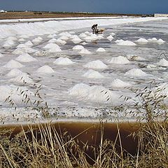 "фото ""Harvesting salt"""
