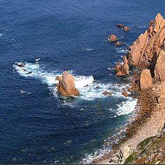 "фото ""Wild Coast"""