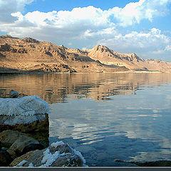 """фото """"Мертвое море"""""""