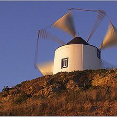 "photo ""Wind mill"""