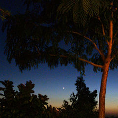 "photo ""The sunset with Venus"""