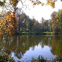 """фото """"Осенний прудик."""""""