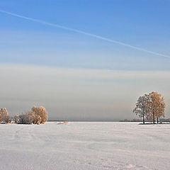 """фото """"Зимний минимализм"""""""
