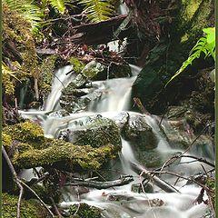 "фотоальбом ""waterfalls"""