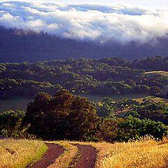 "фото ""Country road"""