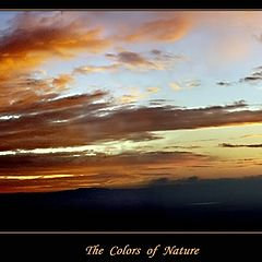 "photo ""The Colors of Nature"""