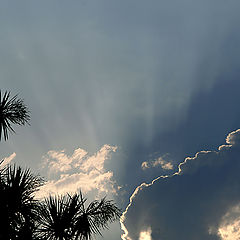 "фото ""Rising light"""