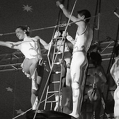 "photo ""Circus"""