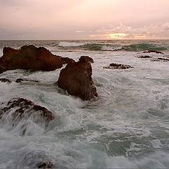 "photo ""Ocean voice"""
