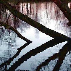 """фото """"Осень и печаль."""""""