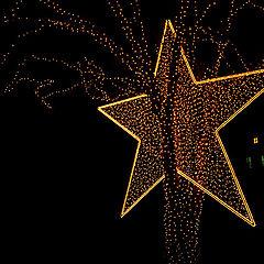 "фото ""New Star...New Year...New Hope"""