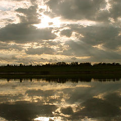 "фото ""Подводное солнце"""