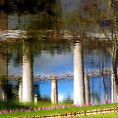"photo ""Sacred Soil - Terrestrial Paradise"""