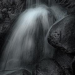 """фото """"Water in b&w"""""""