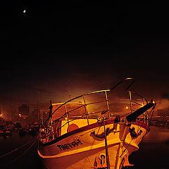 "фото ""Feeling the Moon"""