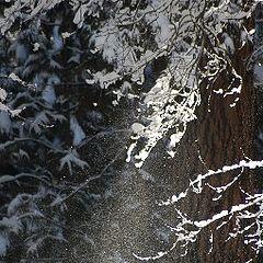 """фотоальбом """"snow, storm & after"""""""