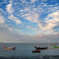 """фото """"Five boats"""""""