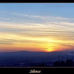 "photo ""Silence"""