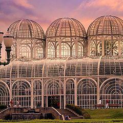 "фото ""Botanic Garden"""