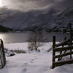 "photo ""vinter"""