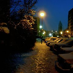 "photo ""winter3"""