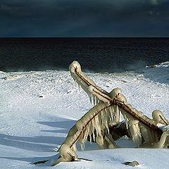 """фото """"Чудеса зимы"""""""