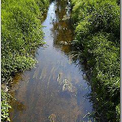 """фото """"В маленькой речке вода как стекло..."""""""