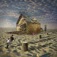 "photo ""Lost in Desert"""