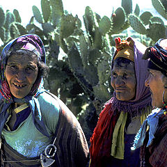 "фото ""three ladies"""