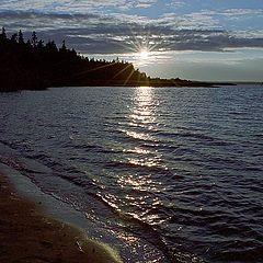 "album ""Seliger Lake"""