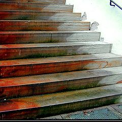 "фото ""...Stairs..."""