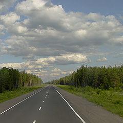 """фото """"Мурманское шоссе"""""""