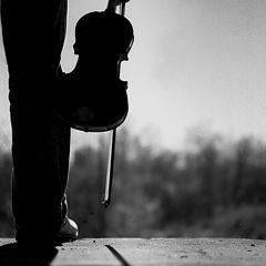 "фото ""Afternoon Sonata"""