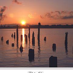 """фото """"Fidalgo Dawn"""""""