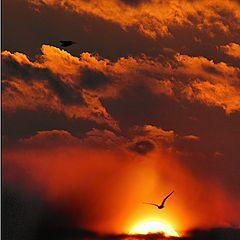 "photo ""Harsh sunset"""
