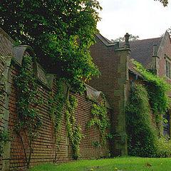 """фото """"Hever Castle Wall"""""""