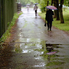 """фото """"Растворяясь в дожде"""""""