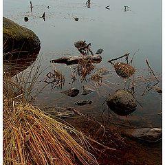 """фото """"Осенний этюд-2"""""""