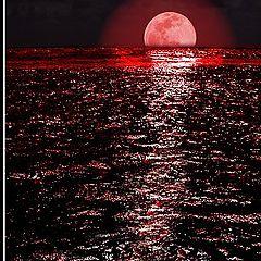 """фото """"Восход багровой луны"""""""